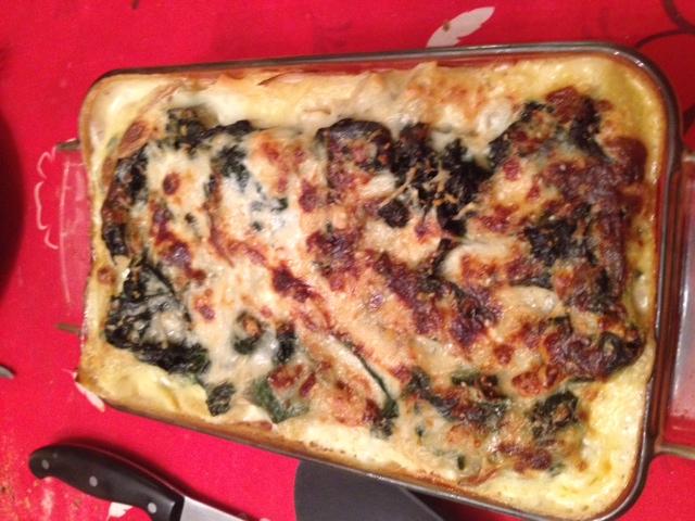 lasagne cuites