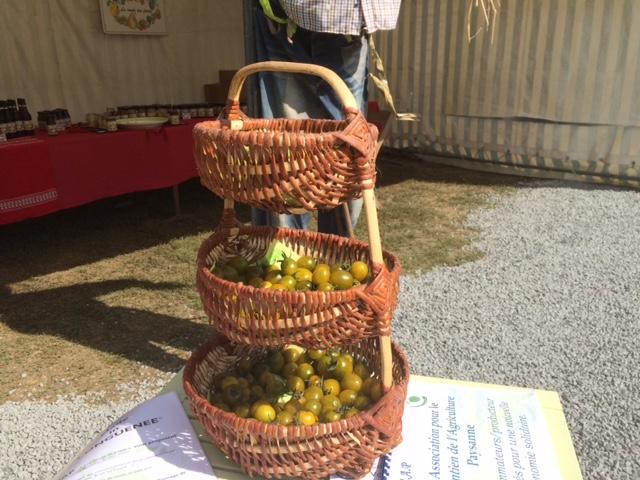 tomates-cerises-vide-grenier-membrolle49