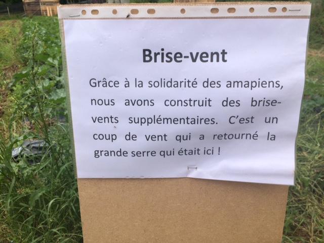 brise-vent-grd-jardin